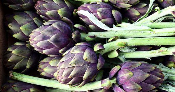Provence - Artichauts - Artichokes