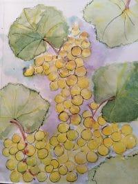 vin blanc rognons et vins du jura